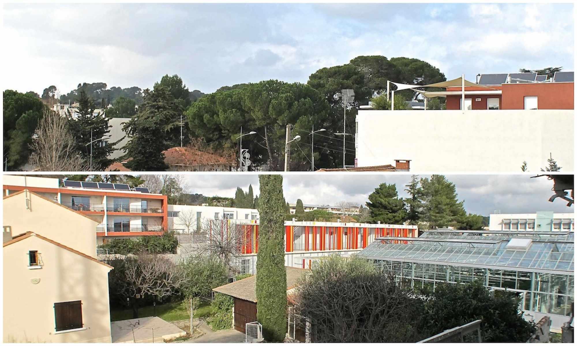 Promoteur immobilier Montpellier : se rapprocher de la Méditerranée